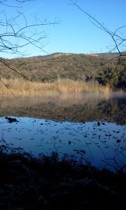 lago inverno - F. Canonico