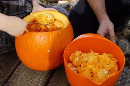 pumpkin-1004950_1920